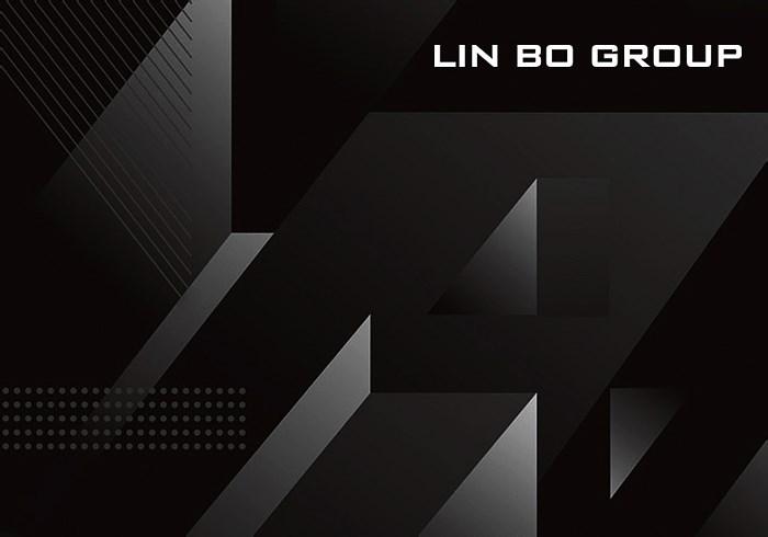 LBG领步电子集团(海外)品牌设计