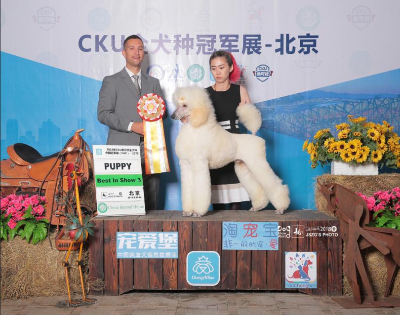 challenger8月北京.png