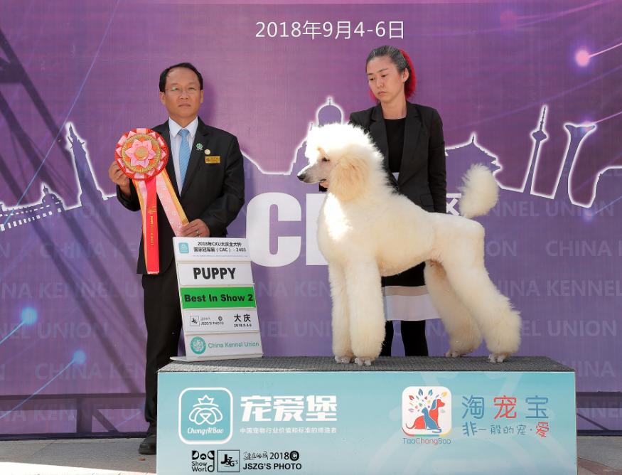 challenger大庆4.png