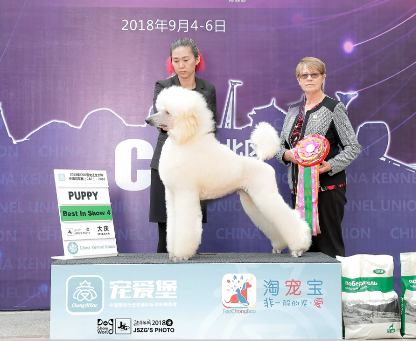 challenger大庆3.png