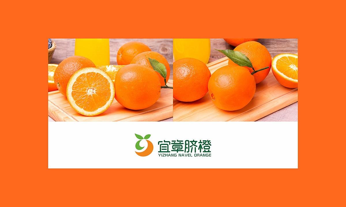 宜章脐橙_0005.JPG