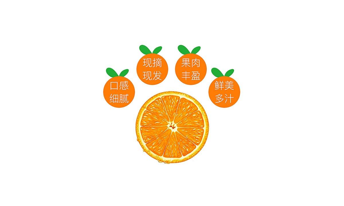 宜章脐橙_0007.JPG