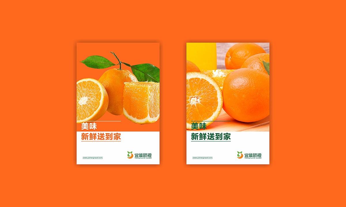 宜章脐橙_0008.JPG