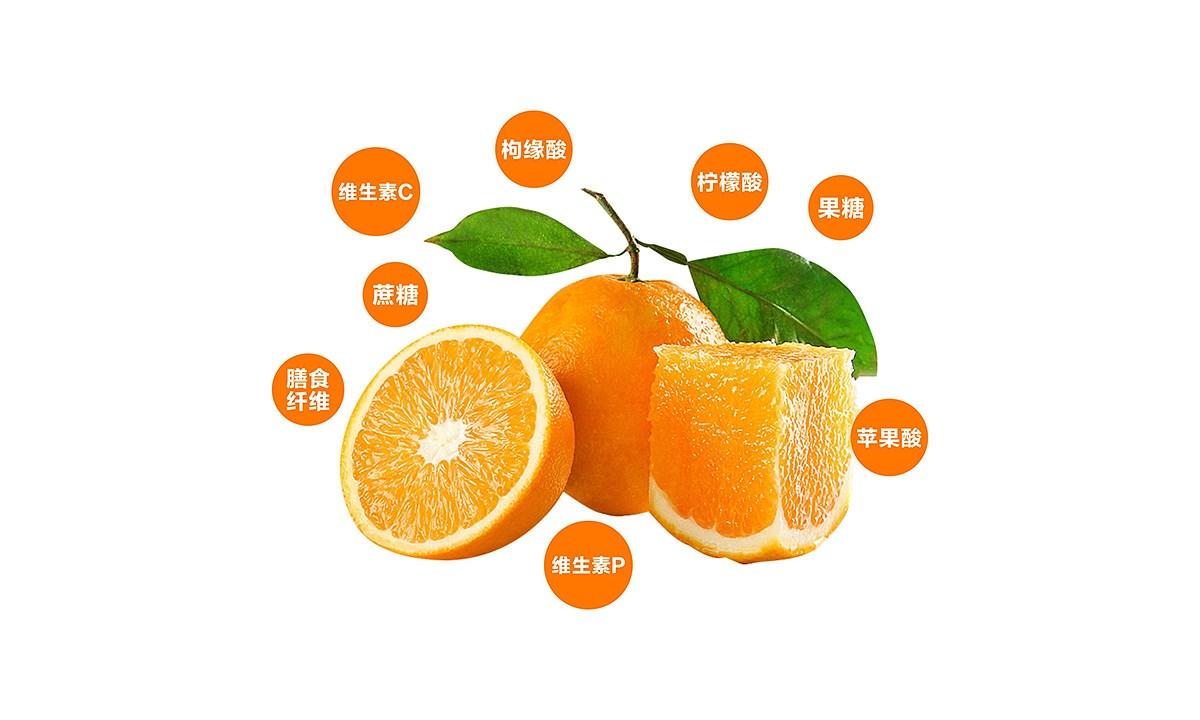 宜章脐橙_0006.JPG