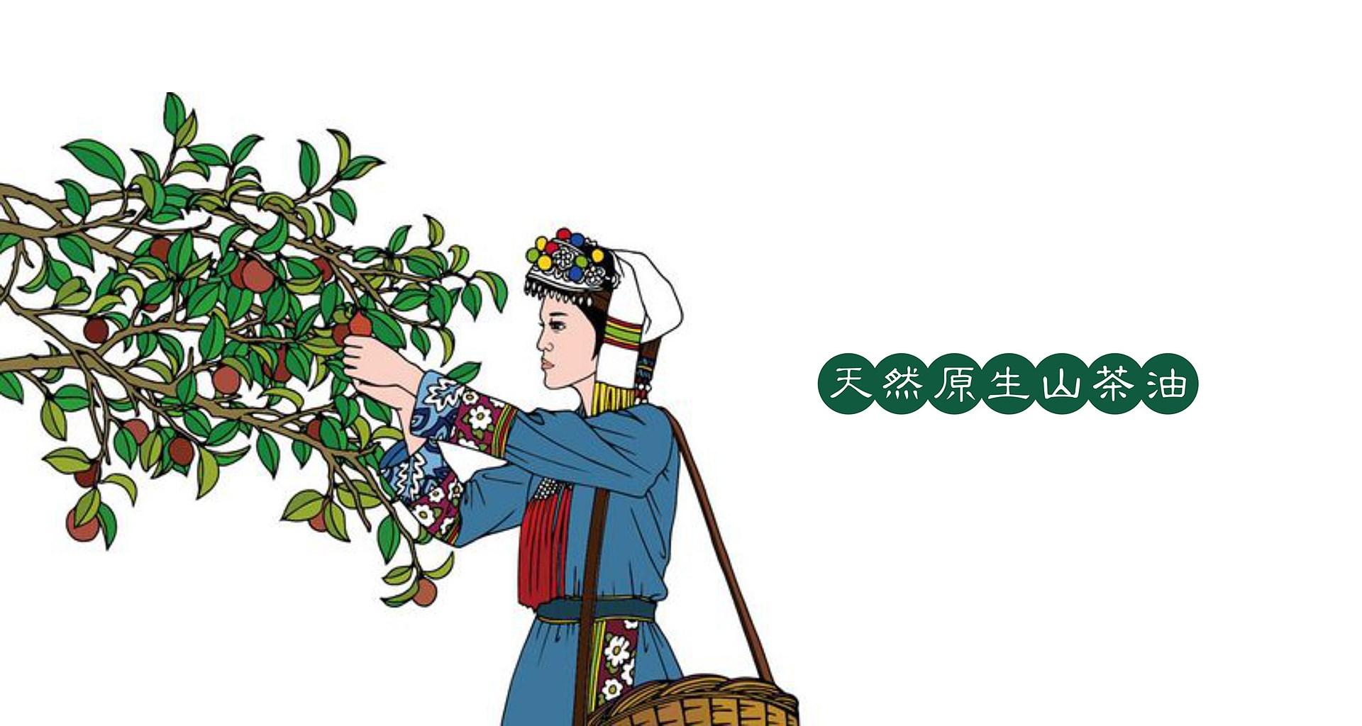 鼎城茶油_0007.JPG