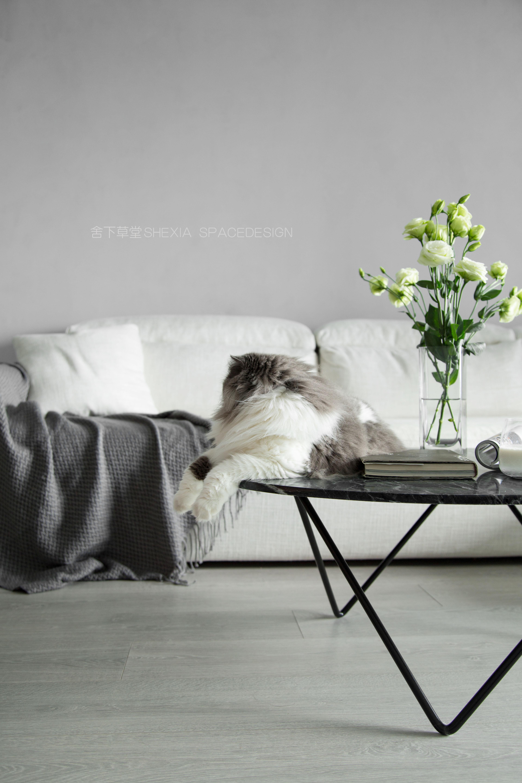 沙发小景.jpg