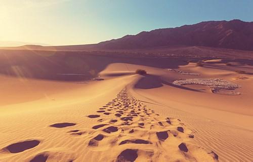 穿越大沙漠