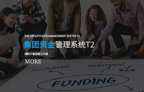集团beplay2网页登录管理系统 T2