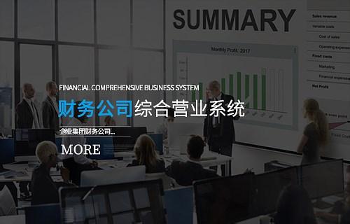 财务公司综合营业系统