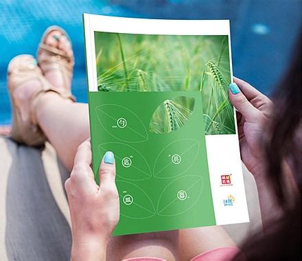 蚂蚁农场画册设计