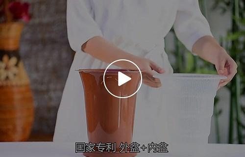 花盆淘宝主图视频拍摄制作