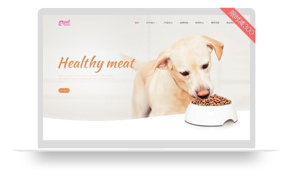 爱宠养护类网站模板