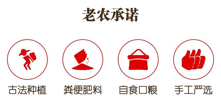红小豆详情_03.jpg