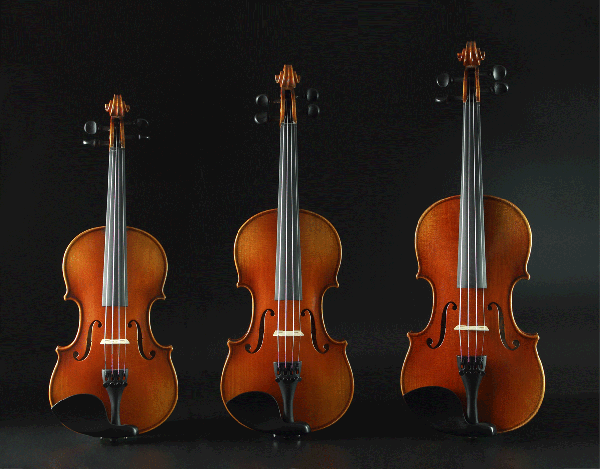 定制级分数小提琴