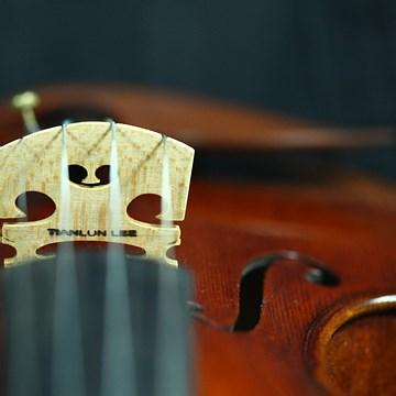 提琴制作详解
