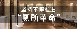 """習近平強調:堅持不懈推進""""廁所革命"""""""