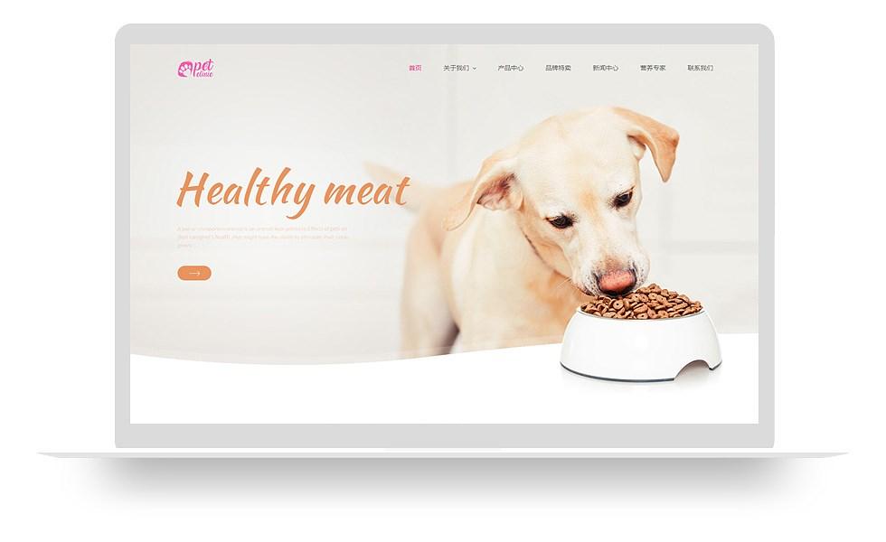 爱宠养护类网站 mo004_2802