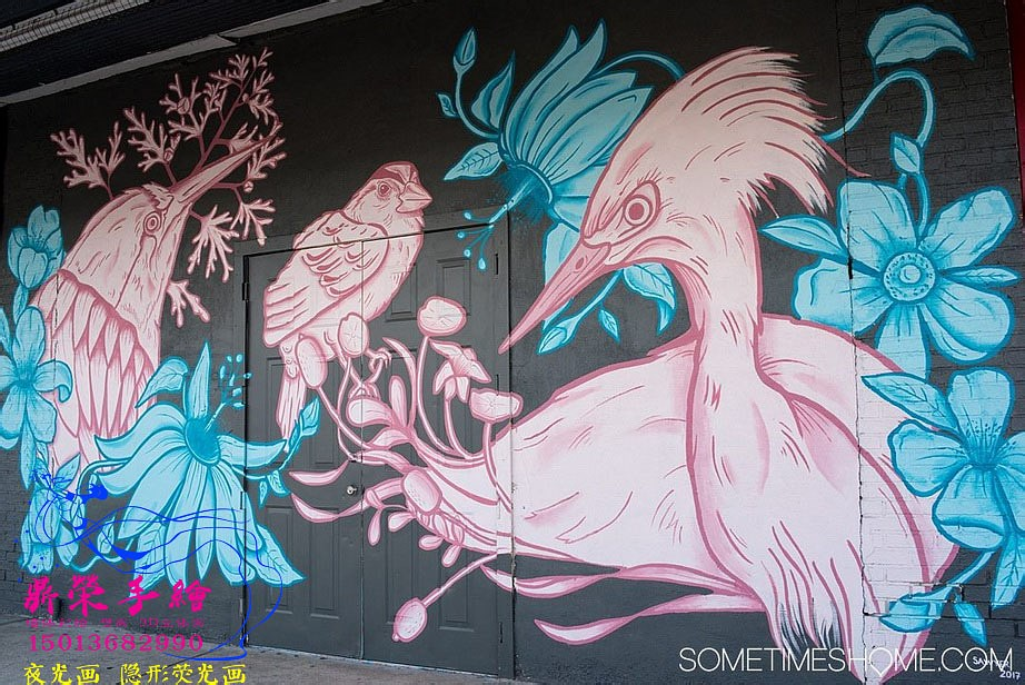 sometimes_home-tampa_bay-street_art-graffiti-murals_0009_调整大小.jpg