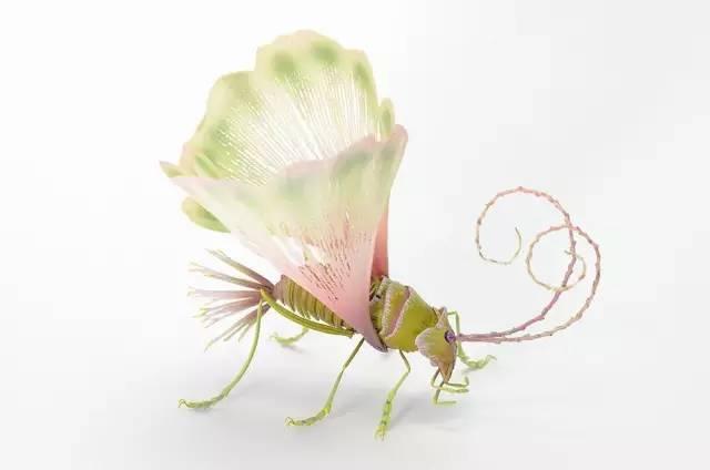 5創意昆蟲 (4).jpg
