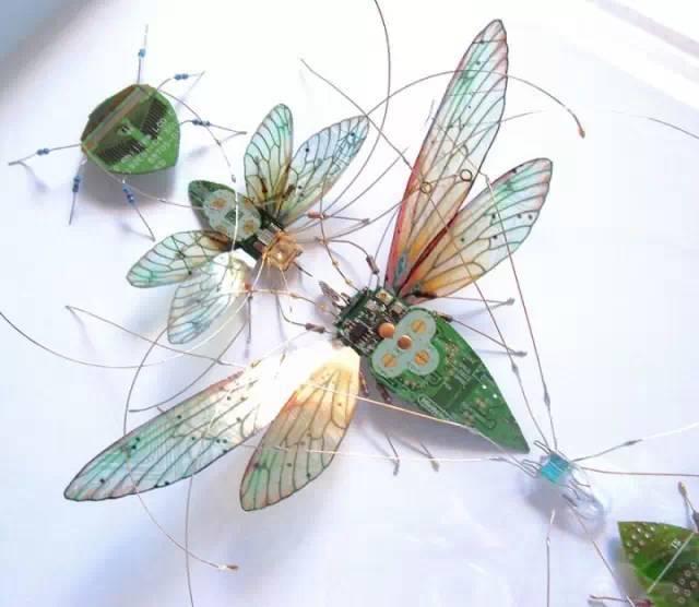 創意昆蟲 (2).jpg