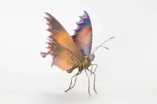 創意昆蟲 (3).jpg