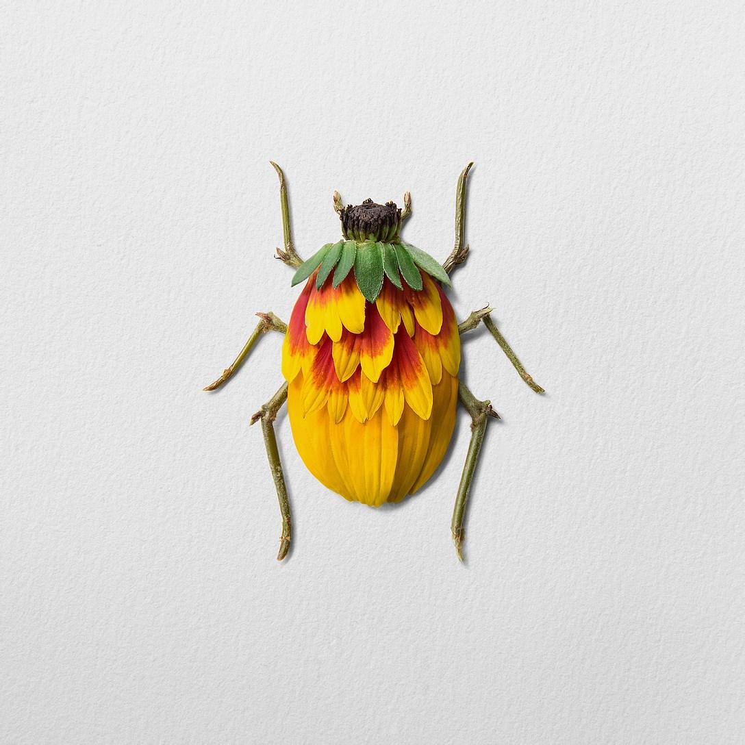 1創意昆蟲 (9).jpg