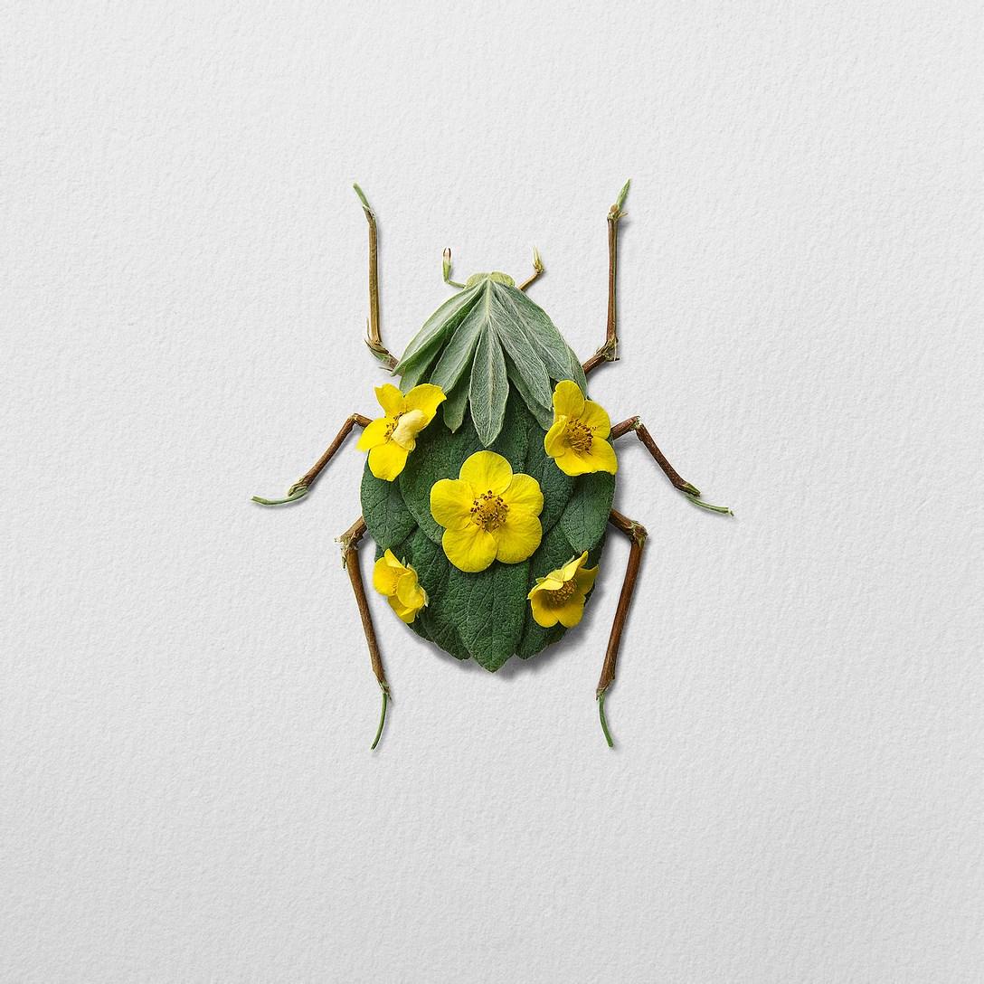 1創意昆蟲 (10).jpg