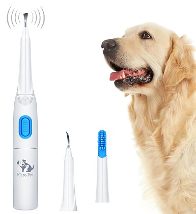Pet Ultrasonic Dental Calculus Remover
