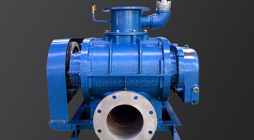 DSR65V羅茨真空泵