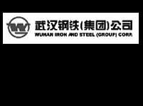 武漢鋼鐵集團