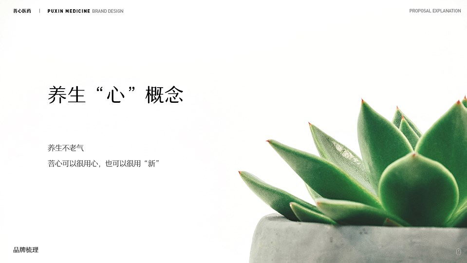 菩心品牌设计提案-06.jpg