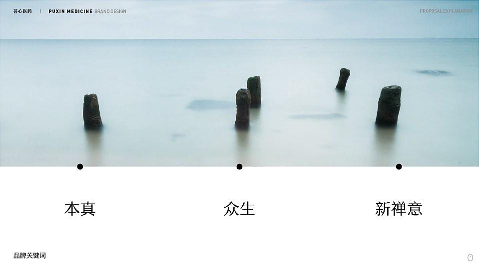 菩心品牌设计提案-07.jpg