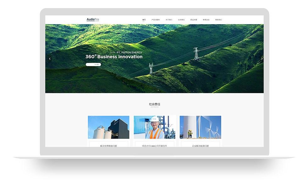 企业集团网站
